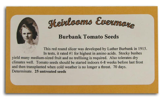 Heirlooms Evermore Burbank Tomato Seeds - 25 seeds