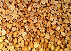 Bulk Peanuts Roasted Salted Domestic - 2 lbs.