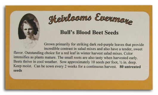 Heirlooms Evermore Bull's Blood Beet Seeds - 80 seeds