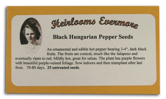 Heirlooms Evermore Black Hungarian Pepper Seeds - 25 seeds