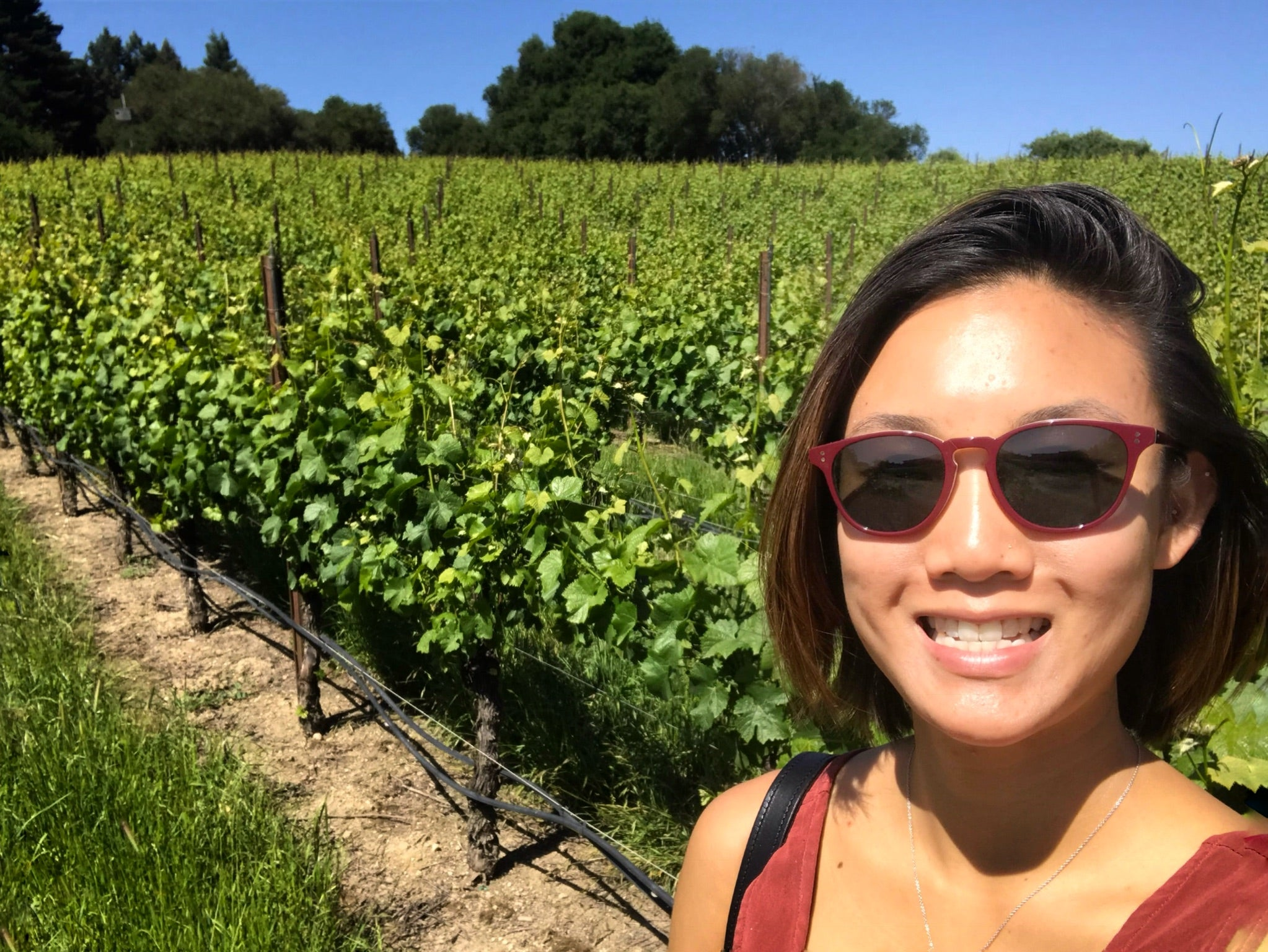Weekend Wine Run in Russian River Valley, Sonoma County, California, USA with @keryums