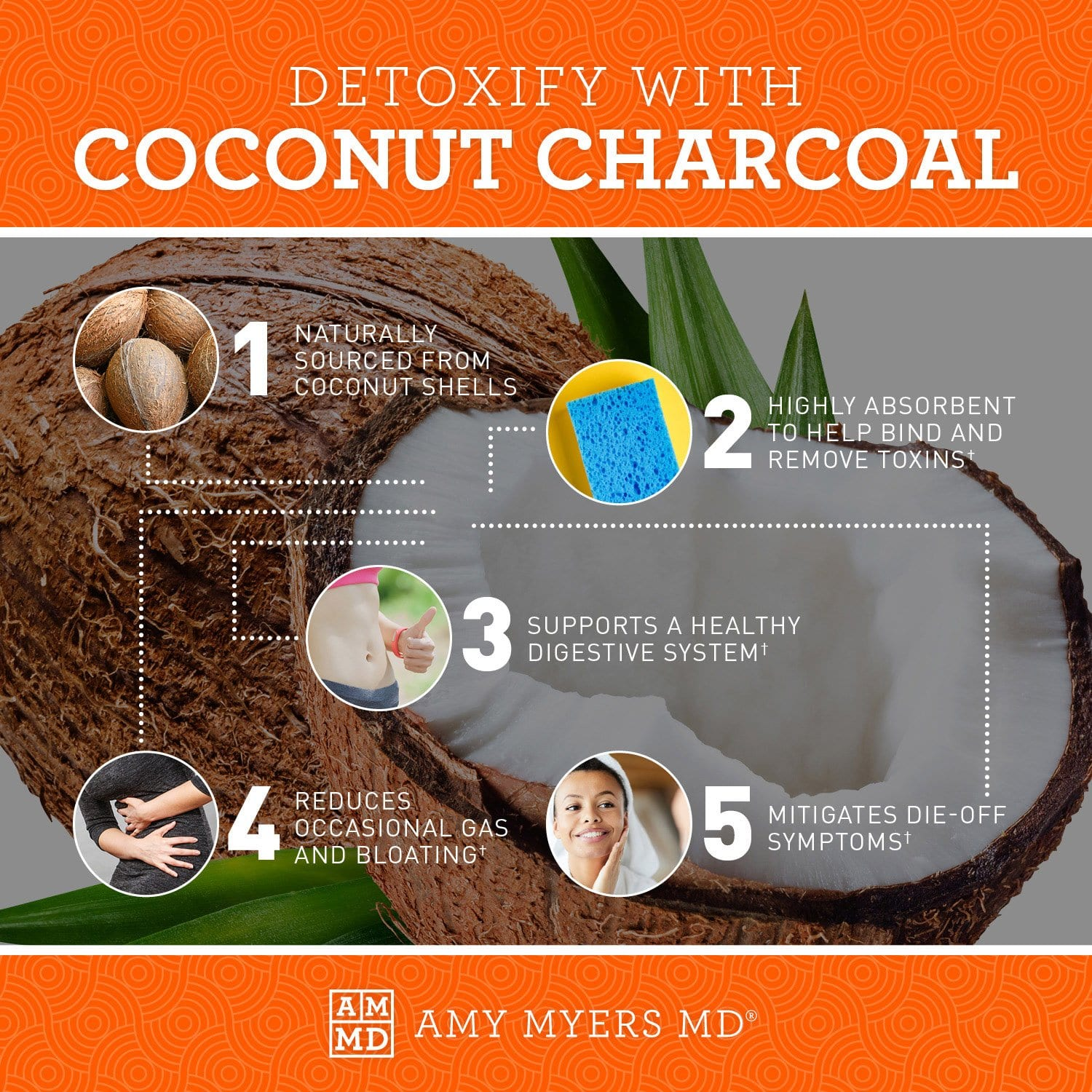 Coconut Charcoal | Amy Myers MD