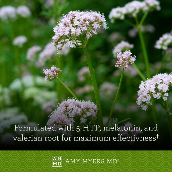 A Flowering Valerian Plant - Rest and Restore MAX™ is formulated with 5-HTP, Valerian Root, and Melatonin, Natural Ingredients - Amy Myers MD®