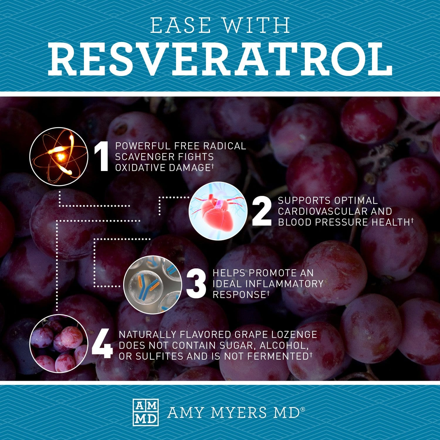 Resveratrol Amy Myers Md