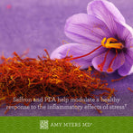 Saffron and PEA help alleviate a healthy response to the inflammatory effects of stress Infographic - Amy Myers MD®