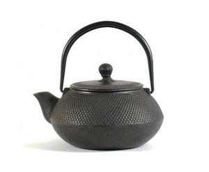 TETSUBIN CAST IRON TEA POT