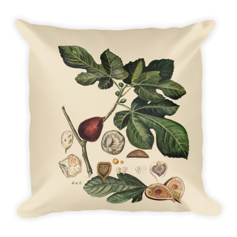 Botanical Plant: The Fig by R Freeland - Square Pillow