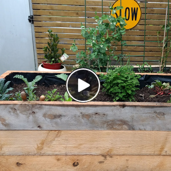 Building a custom raised wicking bed from cypress planks