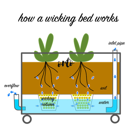 how a wicking bed works