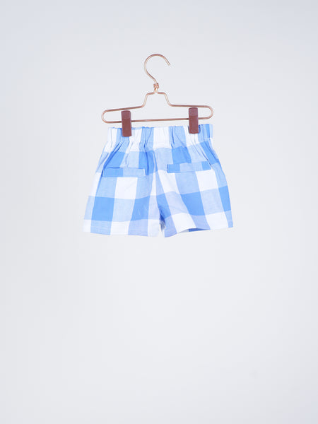 Dakota Gingham Shorts