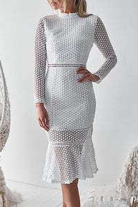 Sexy Lace Backless Long Sleeve Bodycon Dress