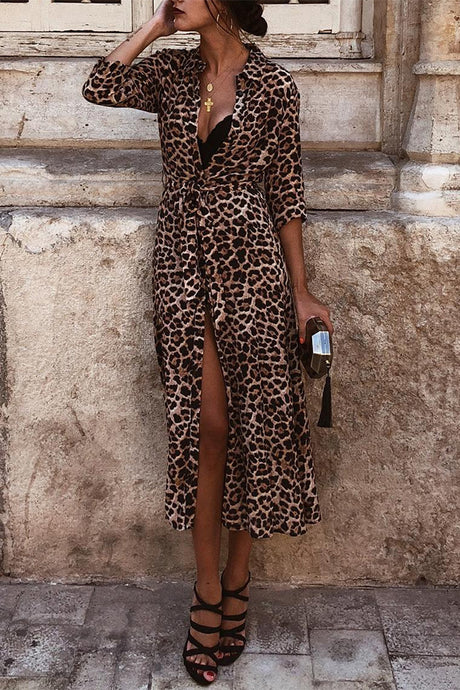 bfc085b045 Sexy Leopard Print Deep V Collar Long Sleeve Lace-Up Fork Maxi Dress
