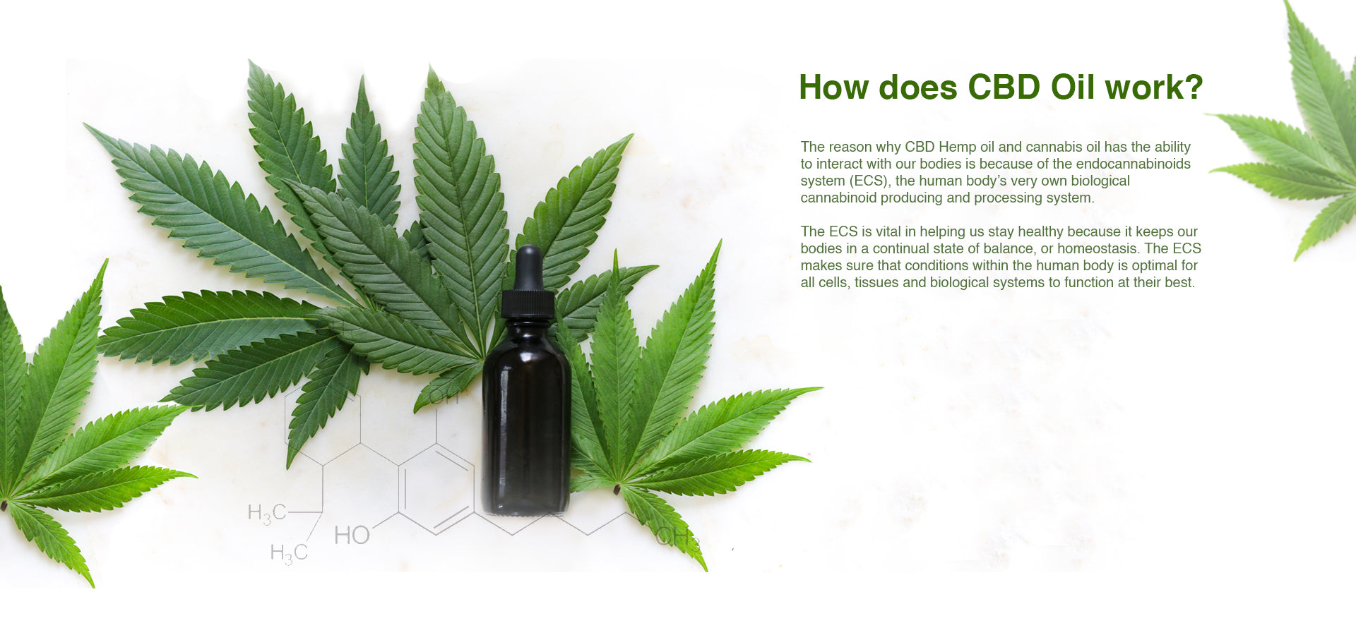 To know more about CBD Oil