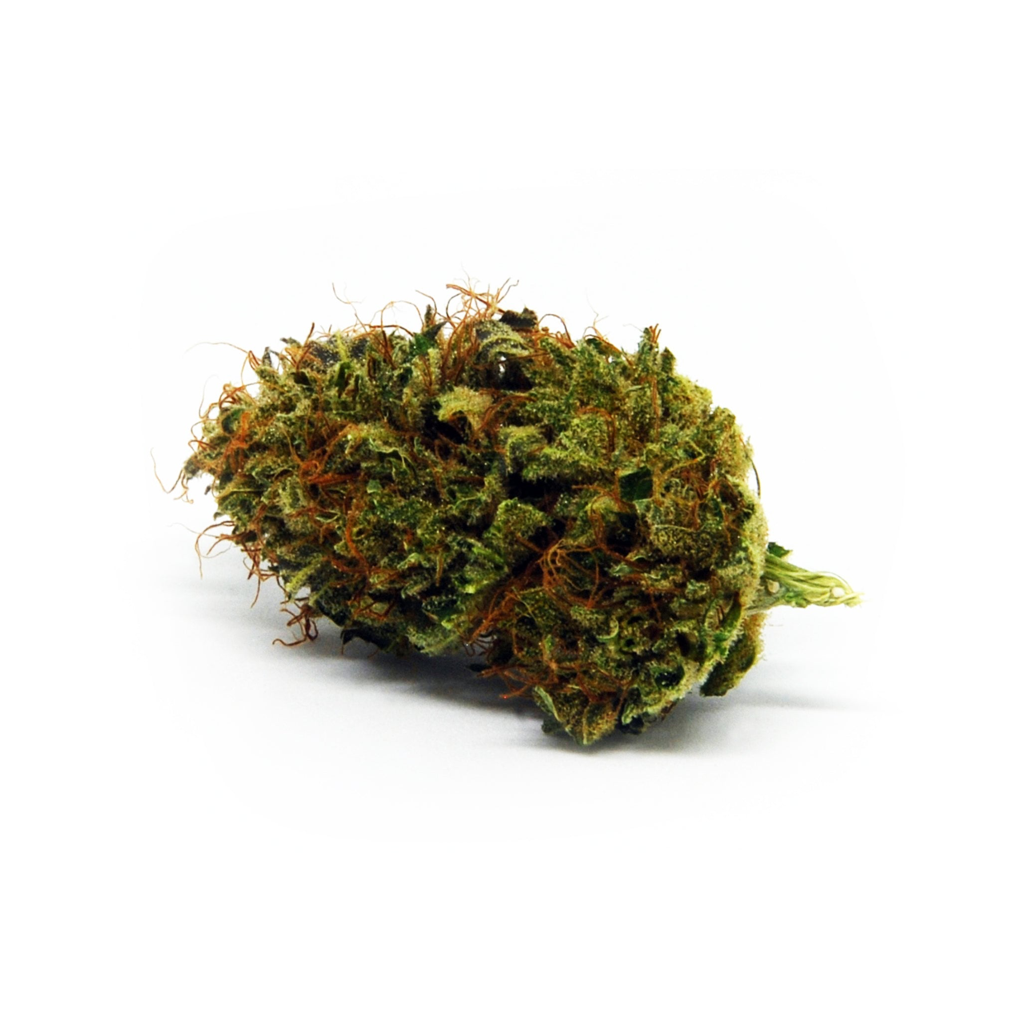 Curly Genie-CBD Cannabis-Ganjah-Swiss CBD Shop-uWeed