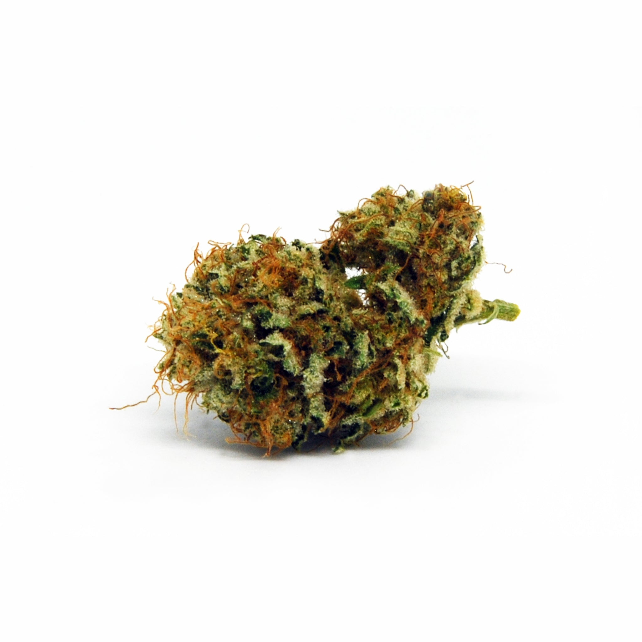 Ganjah - Jahvina - CBD Cannabis - Buy online in uWeed shop - Switzerland