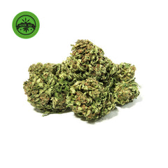 Outdoor Alpina Green-CBD Cannabis-Green Passion-Swiss CBD Shop-uWeed