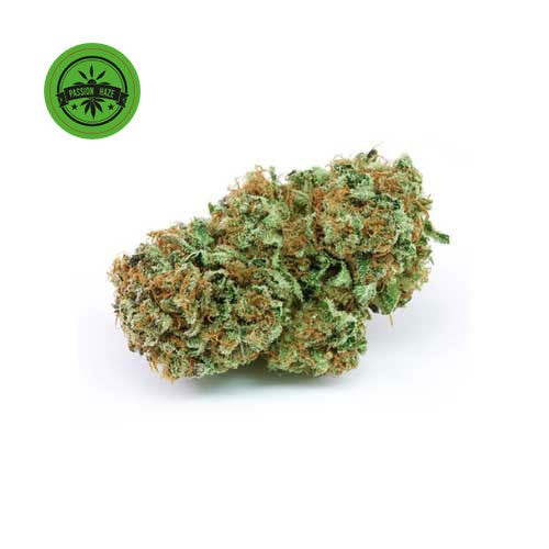 Harlequin-CBD Cannabis-Green Passion-Swiss CBD Shop-uWeed