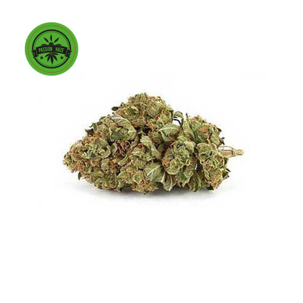 White Passion Outdoor-CBD Cannabis-Green Passion-Swiss CBD Shop-uWeed