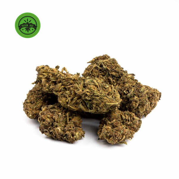 Passion Haze Outdoor-CBD Cannabis-Green Passion-Swiss CBD Shop-uWeed