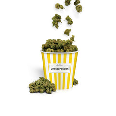 Cheesy Passion Popcorn-CBD Cannabis-Green Passion-Swiss CBD Shop-uWeed