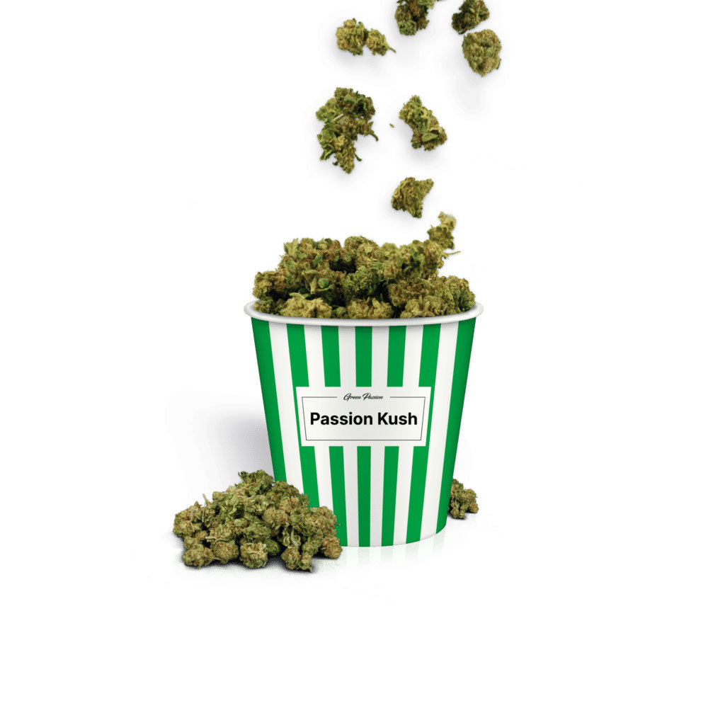 Passion Kush Popcorn-CBD Cannabis-Green Passion-Swiss CBD Shop-uWeed