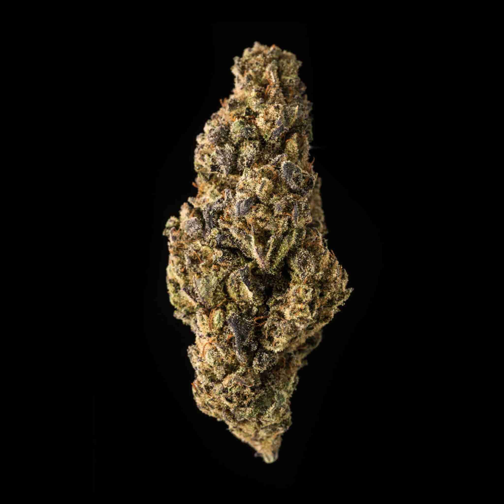 Purple Lemon | Qualicann | CBD Cannabis | uWeed | Swiss CBD Shop
