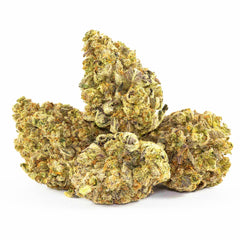 Purple Magic | Swiss Hempcare | CBD Cannabis | uWeed | Swiss CBD Shop | Buy Online Shop CBD Switzerland