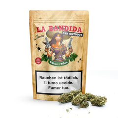 Swiss Botanic - Bandida - CBD Hemp - Buy cannabis online in CBD shop - uWeed Switzerland