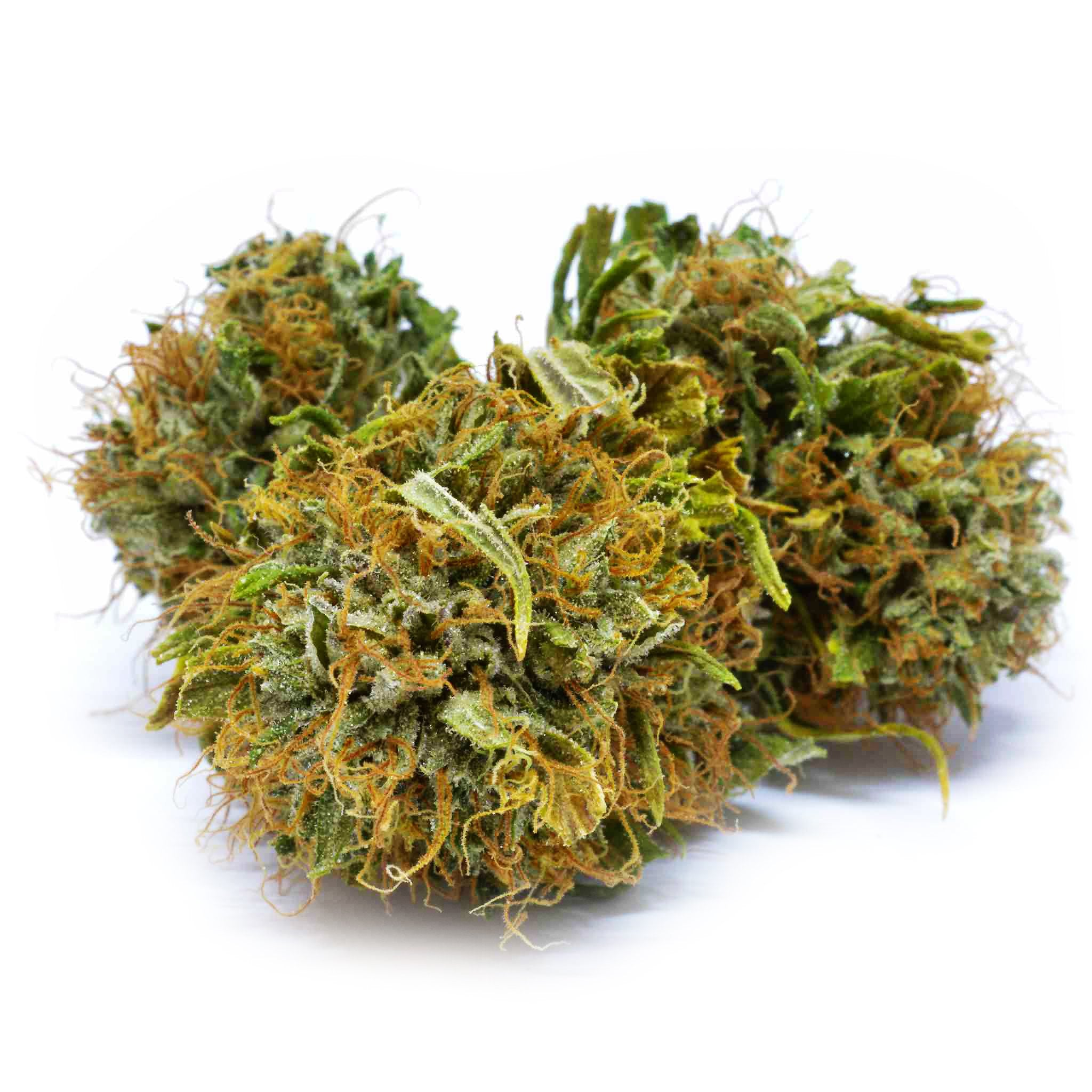 Blueberry-CBD Cannabis-Swiss Botanic-Swiss CBD Shop-uWeed