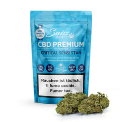 Critical Sensi Star-CBD Cannabis-Swiss Botanic-Swiss CBD Shop-uWeed
