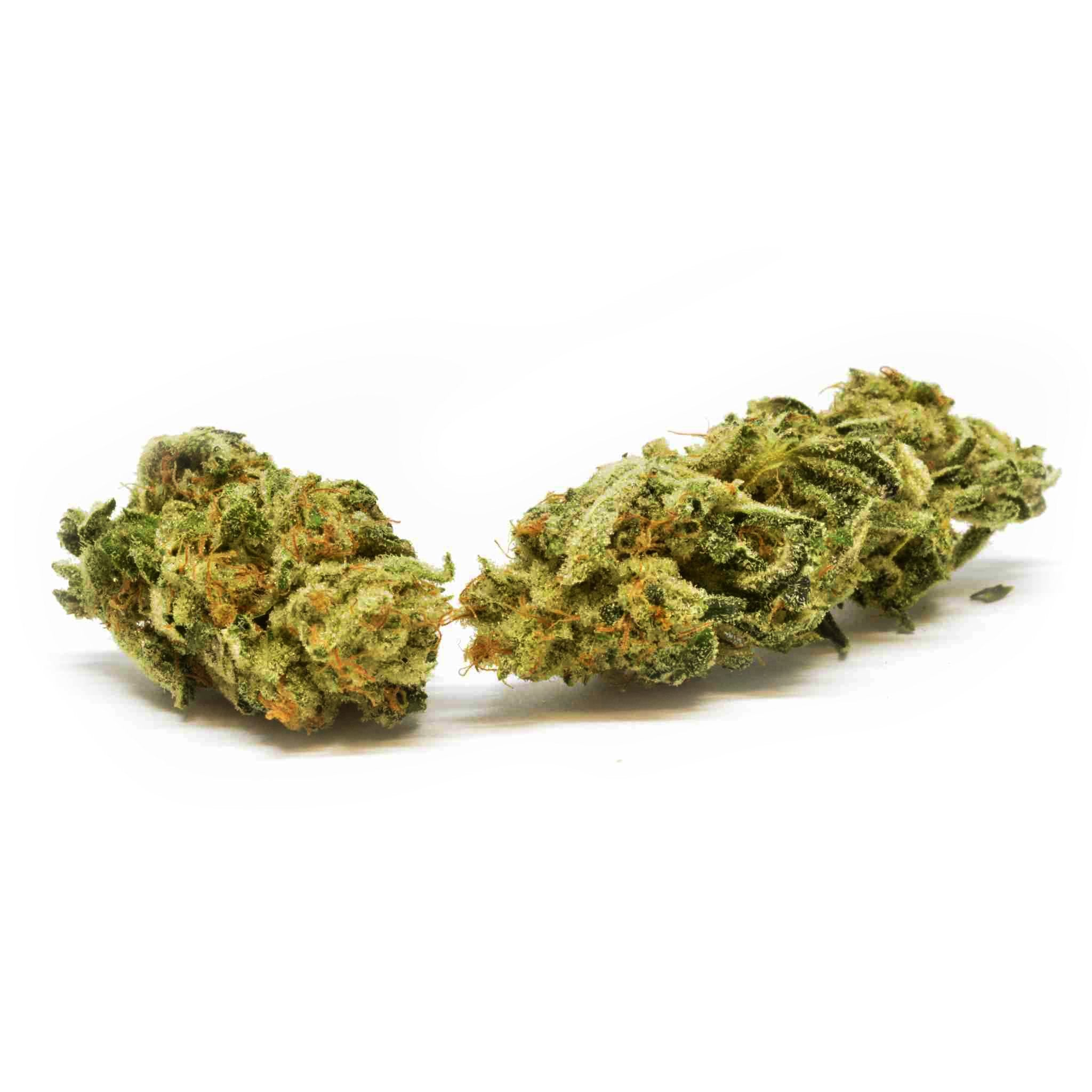 Swiss Botanic - Critical Sensi Star - CBD Cannabis - Buy online in uWeed shop - Switzerland