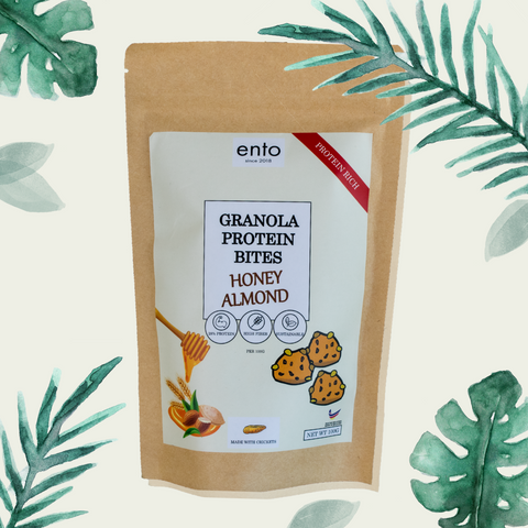 ENTO: Granola Protein Bites 100g - Honey Almond