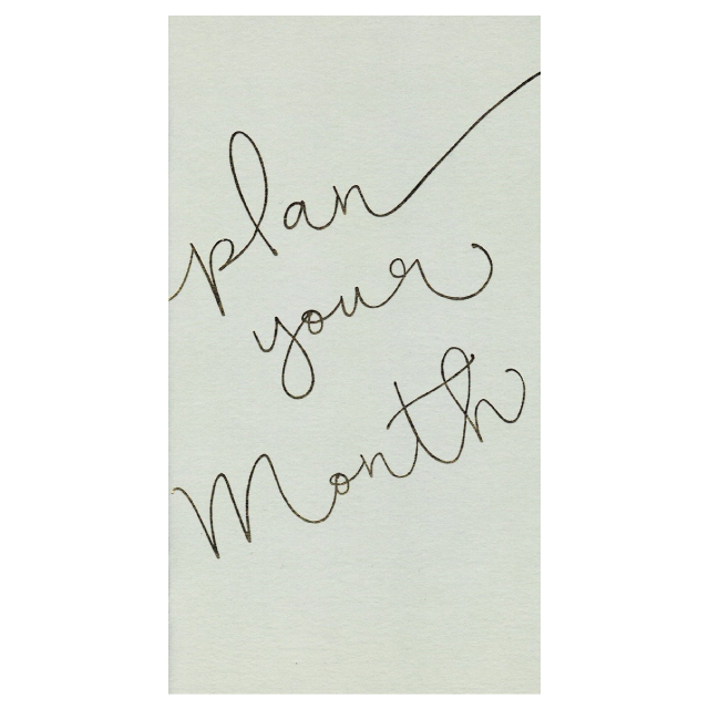 PAPERGEEK Notebook: Plan Your Month