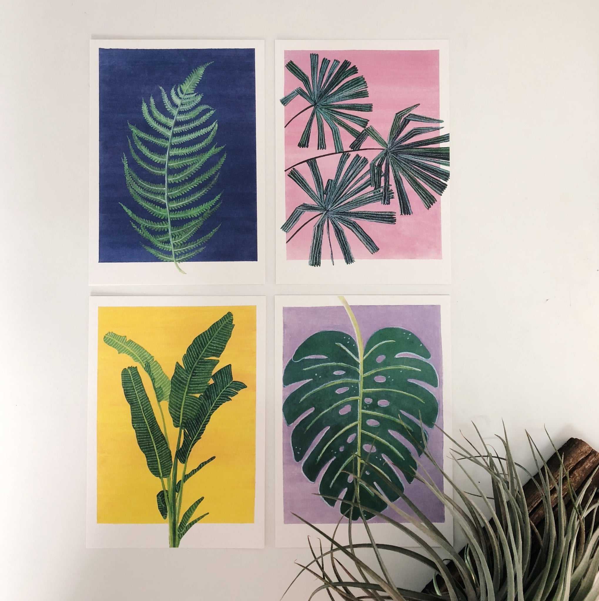 Tropical Plant Postcard Set