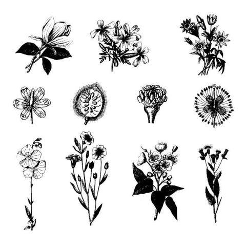 Botanical Rubber Stamp Set