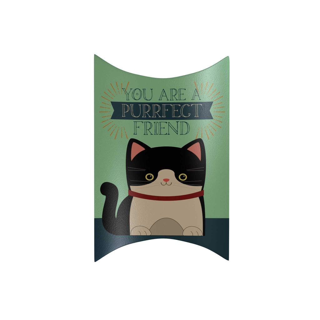 You Are a Purrfect Friend Pillow Box