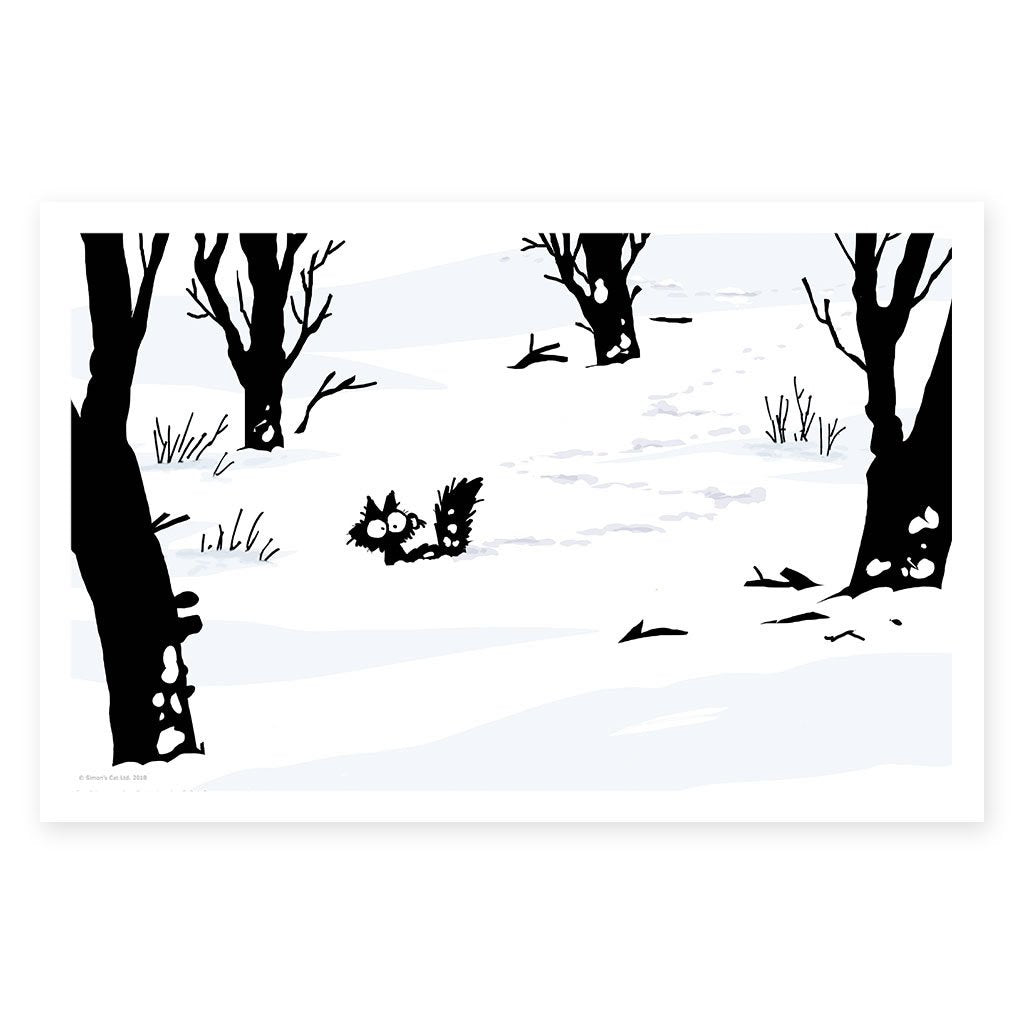Snow Shoes - Framed Art Print (61x40cm)