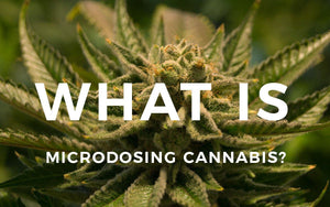 What is Microdosing Cannabis?