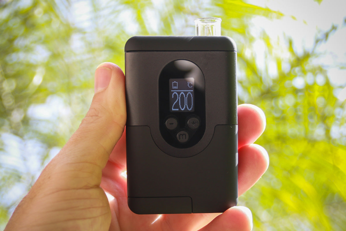 ARGO Vaporizer review