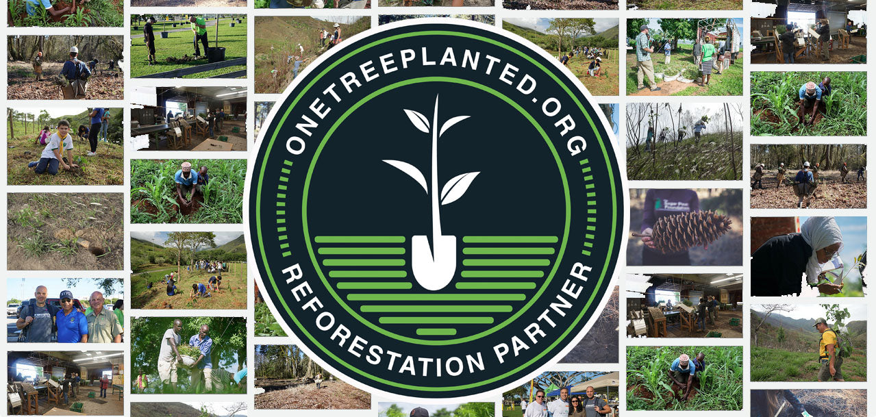 One tree planted partner