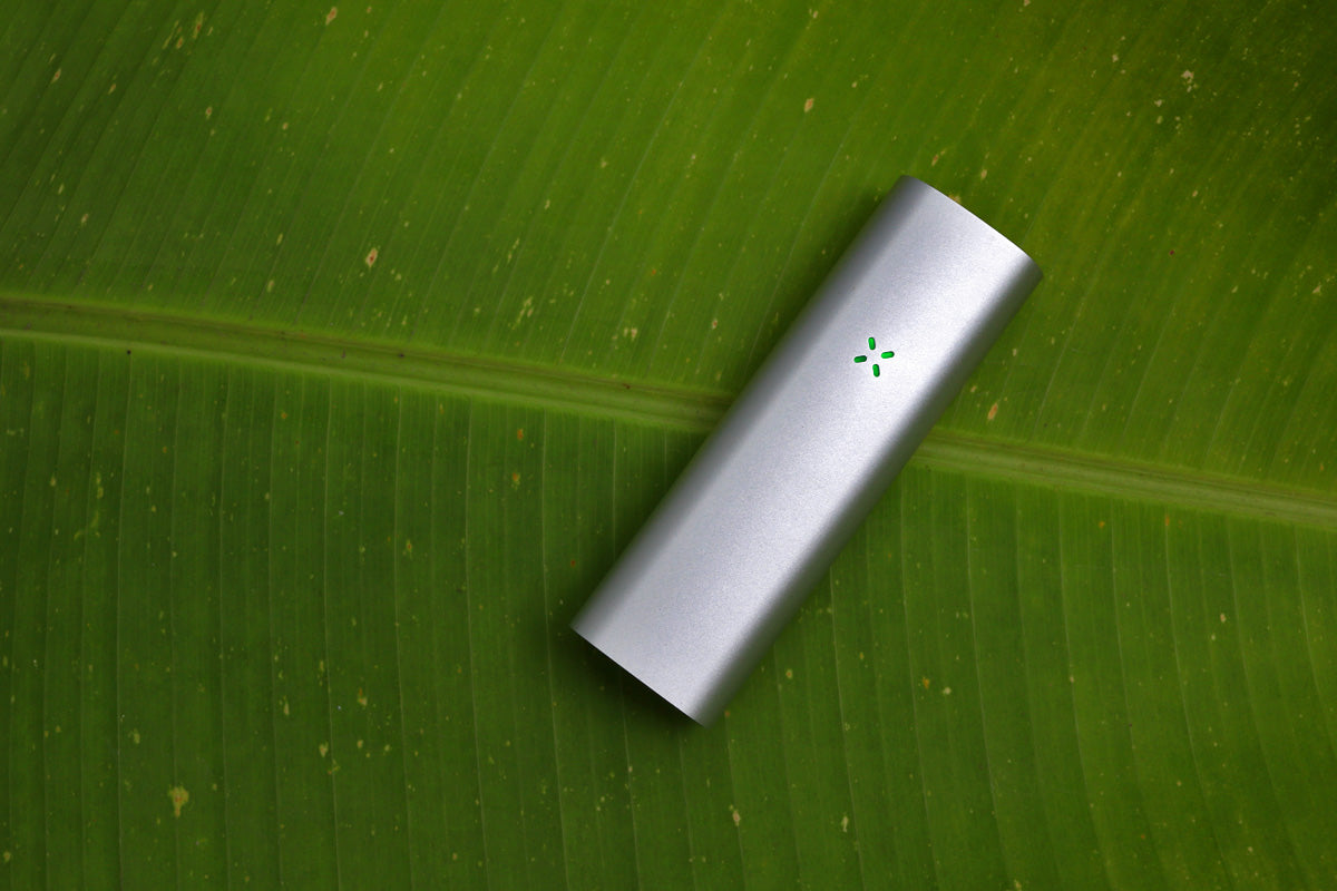 Pax 3 vs Crafty Vaporizer