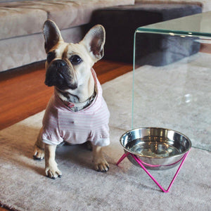 Pink Large Fashion Dog Bowl Stand Luxe Pet Accessories Luxury Pets French Bulldog