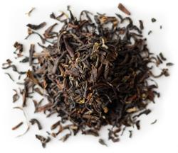 Organic New Moon Darjeeling - Loose Leaf Black Tea Loose Leaf Tea ImmuneSchein Ginger Elixirs