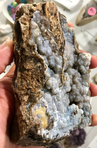 Crystalized Blue Petrified Wood from Eden Valley (Blue Forest) Wyoming