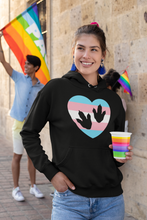 Trans Pride Colors & Dinosaur Tracks Unisex Hooded Sweatshirt - Fossil Daddy