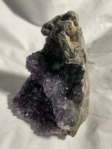 Amethyst Geode from Uruguay for Sale #2 - Fossil Daddy