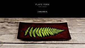Plate Fern uniqe
