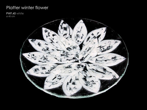 Plater winter flower