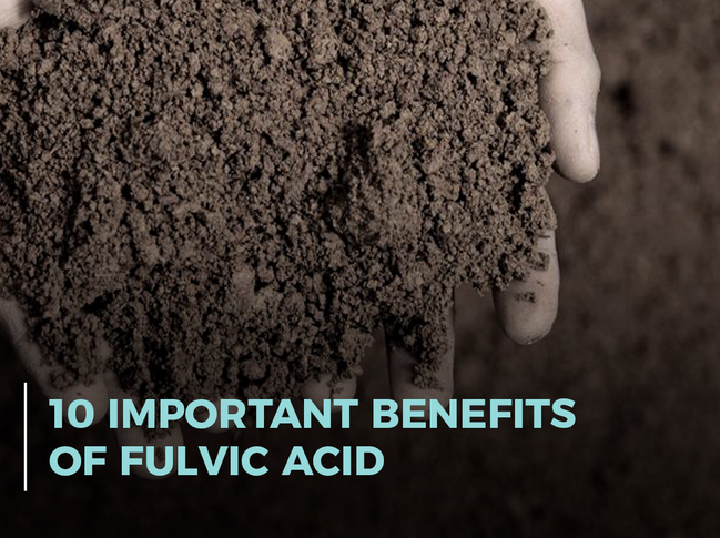 10 Important Benefits of Fulvic Acid