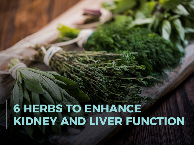 6 Herbs to Enhance Kidney and Liver Function